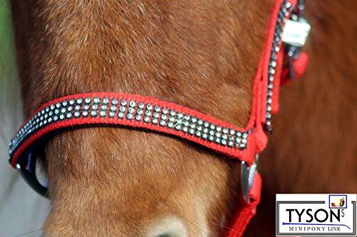 Glitzer Halfter Knallrot ROT Bling w.Strass Nylon MS S P VB WB Extra Full Tysons ! (Pony)