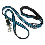 Kurgo 6Quantum (TM) Hände frei Hund Leine für Walking, Laufen oder Wandern & Reflektierende Hundeleine mit Verstellbare Taille Gürtel, Coastal Blue