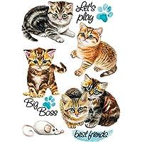 Color Bügeltransfer, DIN A4, Kätzchen | Textilien wie T-Shirts & Taschen mit Bügelmotiven verzieren | Bilder schnell & einfach aufbügeln | DIY Textildesign