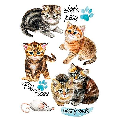 Color Bügeltransfer, DIN A4, Kätzchen | Textilien wie T-Shirts & Taschen mit Bügelmotiven verzieren | Bilder schnell & einfach aufbügeln | DIY Textildesign -