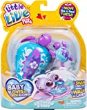Little Live Pets Turtle Single Pack  - Tide