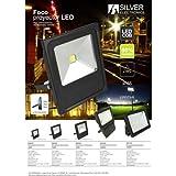 Silver sanz –Projektor LED 100W 8000Lm
