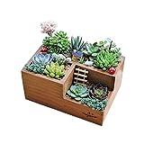 Organizzatore Immagazzinaggio Desk Organizer Vassoio contenitore di legno con scomparti divisori cassetto for l'Artigianato fiori Piante Succulente Gioielli Fiore Moss Container Box Classificare Organ