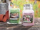 Yankee Candle Tealightbox, Teelichter, 12 Stck Garden Hideaway
