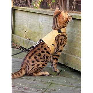 mynwood cat jacket/harness caramel adult cat - escape proof Mynwood Cat Jacket/Harness Caramel Adult Cat – Escape Proof 51Yw89yycHL