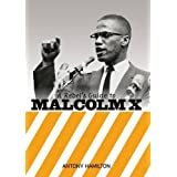 Rebel's Guide to Malcolm X