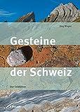 Gesteine der Schweiz: Der Feldführer - Jürg Meyer