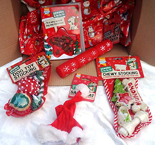 Paradise Pets DOG BOX WITH CHEW & TOY STOCKINGS DOG XMAS HAT CARD AND CRACKER