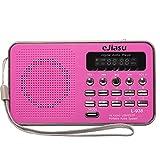 Fm Radio Akku, eJiasu Portable Radio Pink Tragbarer Radio Mini-Digital-Lautsprecher MP3 beweglicher FM Radio Musik-Player USB-TF-Mikro-SD-Karten-Unterstützung für PC iPod Phone (Rosa)