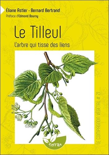 Le tilleul : L'arbre qui tisse des liens