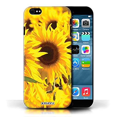 STUFF4 Phone Case / Cover for Apple iPhone 6S / Sunflowers Design / Floral Garden Flowers Collection