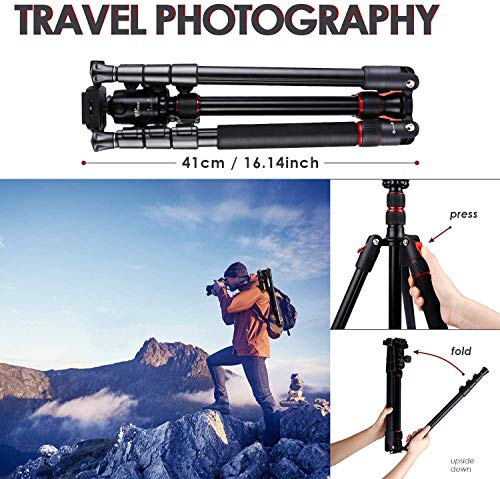 Zoom IMG-3 treppiede per fotocamera amzdeal in