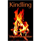 Kindling (a collection of short stories) (English Edition)