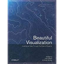 [ Beautiful Visualization ] By Iliinsky, Noah ( Author ) Jul-2010 [ Paperback ] Beautiful Visualization