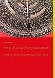 Feng Shui für Fortgeschrittene: Band 3: Xuan Kong Fei Xing - Die Fliegenden Sterne Teil 2