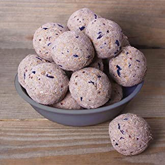 12.75kg (approx.150) Fat Balls without Nets Fatballs 12.75kg (approx.150) Fat Balls without Nets Fatballs 51YxKy7OPDL