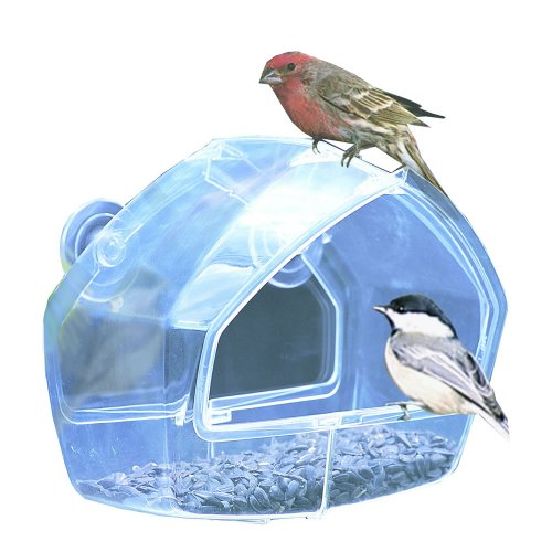Woodstream 348 Perky-Pet transparentes Fenster-Vogelhäuschen (Mutter Vogel-feeder)