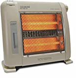 Best Humidifiers - Clearline - Room heater-quartz tube-With Humidifier-Fan assisted-450/900Watt Review