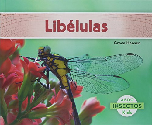 Libélulas (Insectos / Insects)