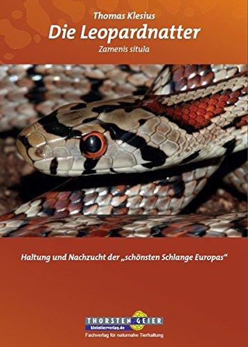 """Die Leopardnatter Zamenis situla: Haltung und Nachzucht der """"schönsten Schlange Europas"""""""