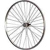 Taylor Wheels 28 pollici ruota posteriore bici per cassetta 622-19 argento