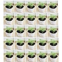 YUVAGREEN UV Treated Grow Bag, White, 24 x 24 x 40 cm, 8 Pieces
