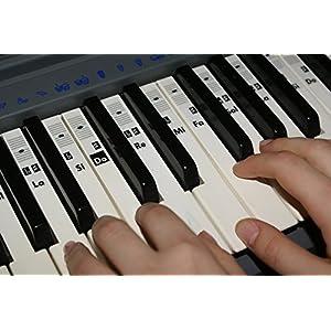 Adesivi note per tastiera pianoforte piano pianola trasparenti Do-Re-Mi-Fa-Sol-La-Si