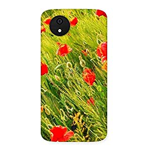 Delighted Beauty Flowers Farm Back Case Cover for Micromax Canvas A1