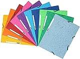 Exacompta Europa Cartelletta A4 24 x 32, multicolore, pacco da 10