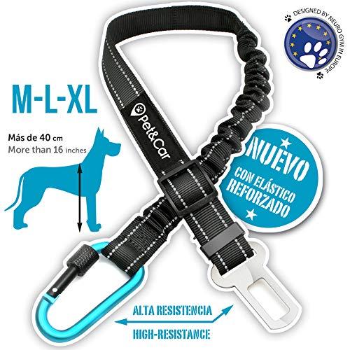 PET & CAR Hundesicherheitsgurt fürs Auto. Elastischer Anschnallgurt für Hundegeschirr. Ausziehbare Hundeleine für Gurtschloss. Schwerlast Hund Sicherheitsgurt. (mittel - groß (M - L - XL))