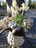 Garten Deko Figur Schaf Molly Dekofigur Gartenfigur Statue Schaf mit Pflanztopf XL 45 cm frostfest handbemalt – Dekoschaf mit Pflanzgefäß – wetter- und frostfeste Markenqualität