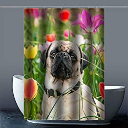 costumbre Pug Dog Perro Carlino – 100% poliéster fábrica cortina de ducha Shower Curtain, poliéster, b, 48x72(inches)