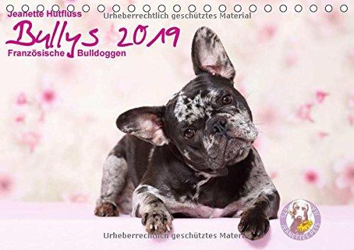 Bullys - Französische Bulldoggen 2019 (Tischkalender 2019 DIN A5 quer): Kleine Hunde mit großem Herz (Monatskalender, 14 Seiten ) (CALVENDO Tiere) (Welpen-kalender-kleine)