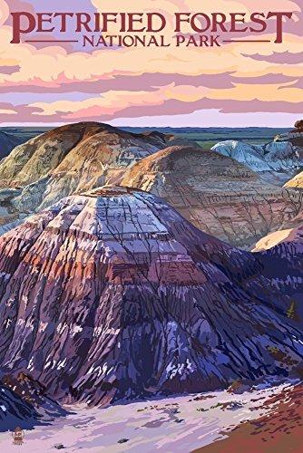 Versteinerter Forest National Park, Arizona-Chinle-Formation, Papier, multi, 9 x 12 Art Print