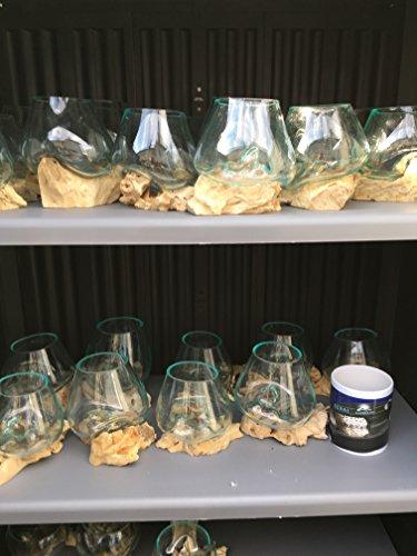 Liqva S, Wurzelholz Designer-Vase S, Gamal S, Teakholz-Vase, Dekoglas S,Wurzelholz Glasvase S,Liqvavase S,Gamal S,root molten vase S