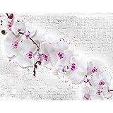 Fototapeten Blumen Orchidee Steinwand 352 x 250 cm - Vlies Wand Tapete Wohnzimmer Schlafzimmer Büro Flur Dekoration Wandbilder XXL Moderne Wanddeko - 100% MADE IN GERMANY - 9323011b