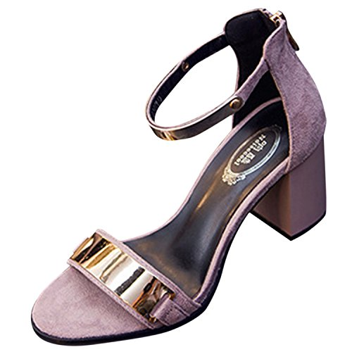 Oasap Women's Open Toe Ankle Strap Back Zip Block Heels Sandals Grey