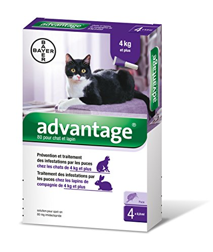 bayer-advantage-80-chat-lapin-4-10-kg-4-pipettes-antiparasitaires