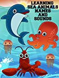 Learning Sea Animals Names And Sounds [OV]
