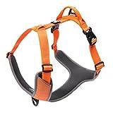 Best Front Range No-pull Dog Harnesses - SGODA Front Range No Pull Dog Harness 3M Review