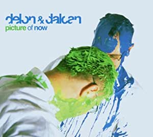 Delon & Dalcan : Picture Of Now [Import anglais]