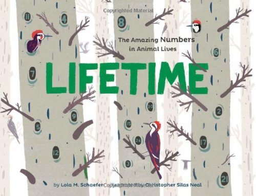 Lifetime: The Amazing Numbers in Animal Lives by Lola M. Schaefer (2013-09-24)