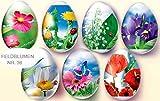 Ostereier Schrumpffolie. Feldblumen. Nr. 36 reicht für 7 Eier