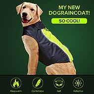 Vizbrite Dog Raincoat Waterproof Windproof Dog Jacket with Comfortable Fleece Reflective Line Dog Cloth Apparel for Small Medium Large Dogs (Medium, Green)