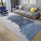 CJW Schlafzimmer Nachtdecke Wohnzimmer Teppich Matte Ins Windlicht einfache nordamerikanische Moderne Druckteppich (Color : D, Größe : 2.6'X5.2')