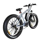 Weebot Cross Vélo électrique Mixte Adulte, Gris