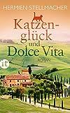 Katzenglück und Dolce Vita: Roman (insel taschenbuch)