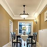 lampadario Lampadario moderno, minimalista, LED, luce, personalità, ristorante, bar, lampada ( Colore : B )
