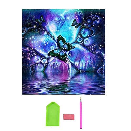 TOOGOO DIY 5D Diamant Peinture Kits Perceuse Complète,Une Histoire Strass Cristal Broderie Photos Point de Croix pour Décoration de La Maison Décoration Papillon 3030cm(11,8x11,8 Pouces)