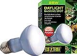 Exoterra Éclairage pour Reptiles Lampe Daylight Baskingspot 75 W